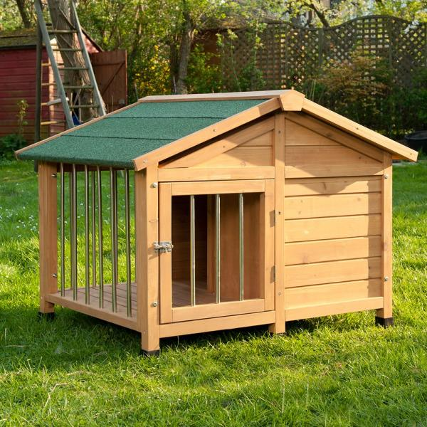 backyard dog house