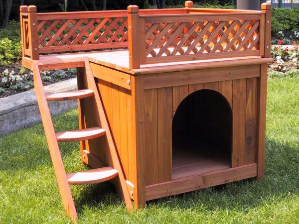 cozy dog house
