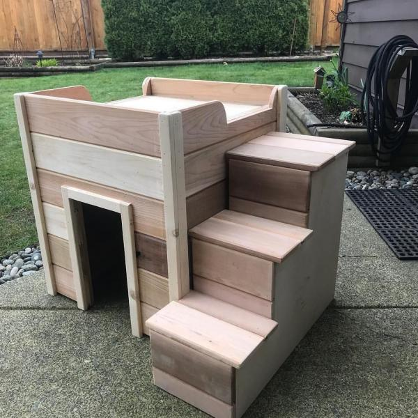 dog house with stairs