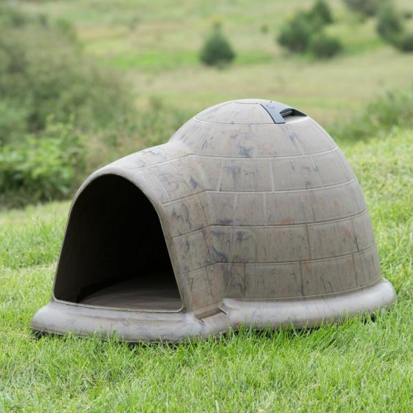 double igloo dog house