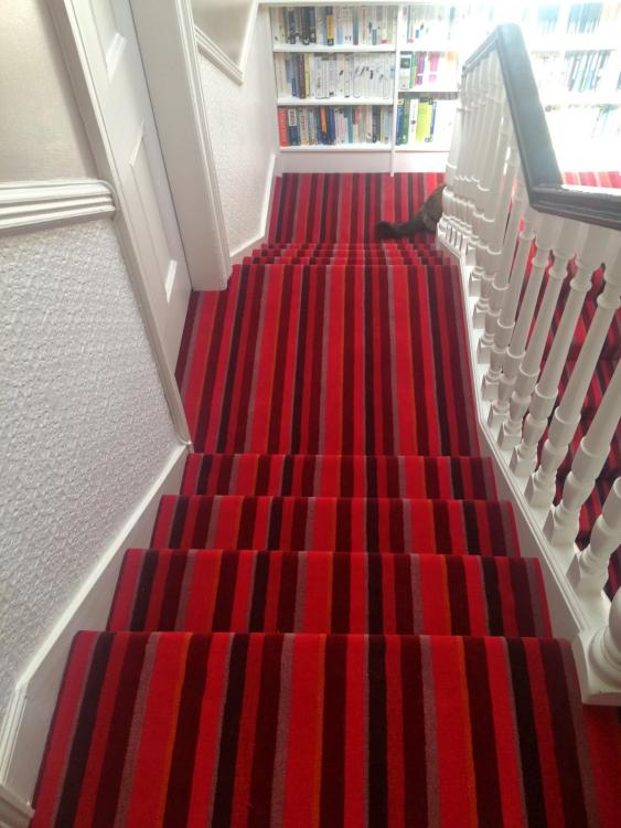 red striped stair carpet