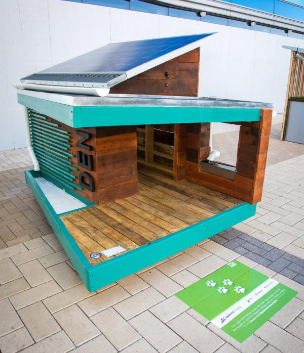 solar powered dog house