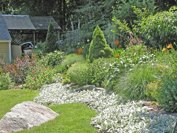 backyard hillside landscaping ideas