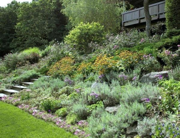 cheap hillside landscaping ideas