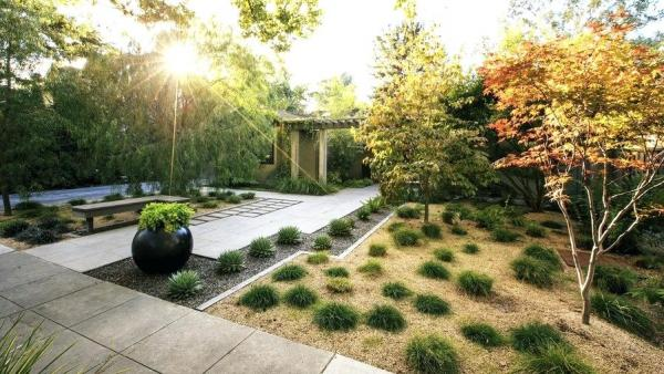 diy drought tolerant landscaping ideas