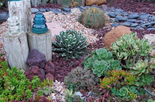 drought landscape design ideas