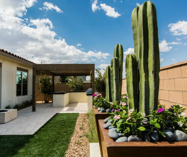 drought landscaping design ideas