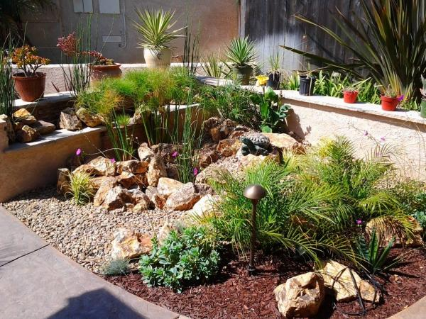 drought landscaping ideas for backyard