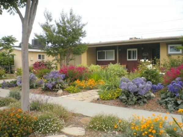 drought tolerant landscaping ideas southern california