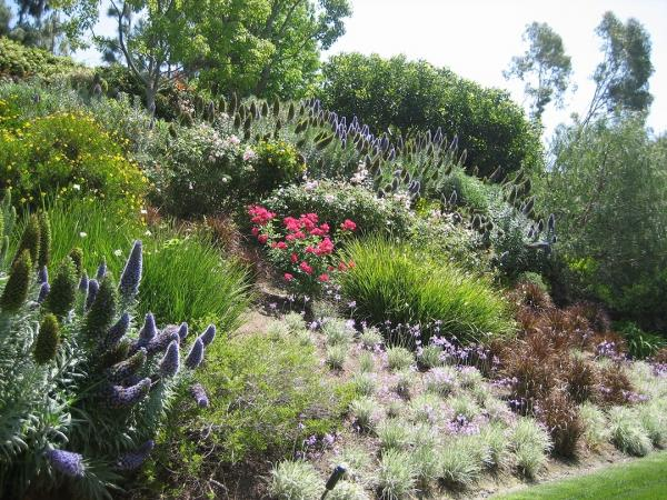 easy hillside landscaping ideas