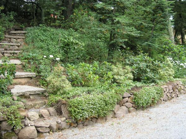 hillside erosion control landscaping ideas