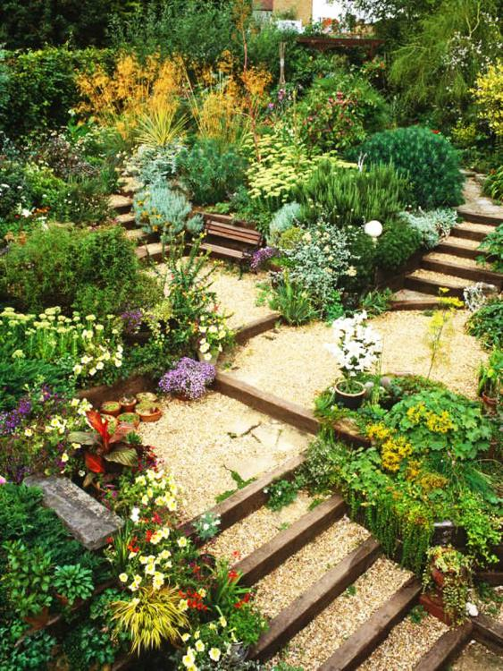 hillside landscaping ideas on a budget