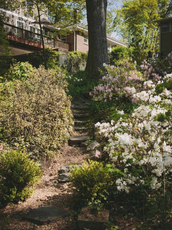hillside landscaping ideas