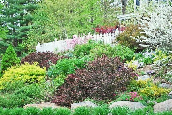 pictures of hillside landscaping ideas
