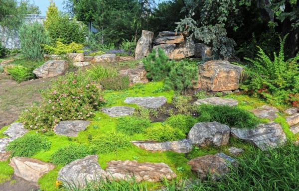 rock hillside landscaping ideas