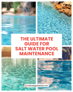 best step by step guide to maintenance salt water pool